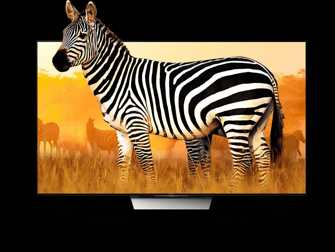 ZIDOO X9S X8 TV